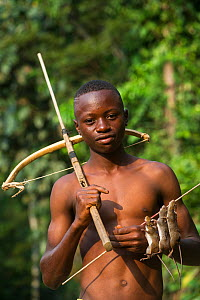 Boy with homemade crossbow used to shoot rats. Mbomo, Odzala-Kokoua National Park, Republic of Congo (Congo-Brazzaville), Africa, June 2013.  -  Pete Oxford