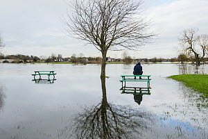 Man sat on picnic bench in park flooded by River Thames, Chertsey, Surrey, UK, February 2014. - Terry  Whittaker