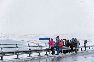 Tourists watching Killer whales (Orcinus orca) from shore, Grundarfjordur, Iceland, March 2014.  -  Terry  Whittaker