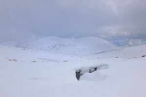Crevasse at Lough Shannagh with a view of Slieve Binnian, Mourne Mountains, County Down, Northern Ireland, UK. March 2013.  -  Robert  Thompson