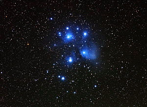 The Pleiades or Seven Sisters (M45), a star cluster in the constellation Taurus, taken 26 September 2014 from Eastern Colorado. Taken with digital focus stacking.  -  Charlie  Summers