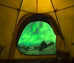 Aurora borealis / Northern Lights seen from entrance to tent, Brooks Range, Gates of the Arctic National Park, Alaska, USA, September 2014. - Floris  van Breugel