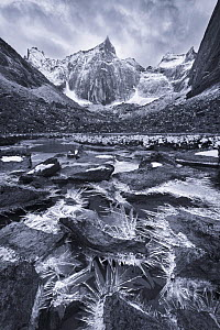 Black and white photograph of Ice crystals up to 12 inches long along a small creek in a remote valley, Brooks Range, Gates of the Arctic National Park, Alaska, August 2014.  -  Floris  van Breugel