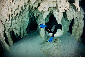 Scuba diver following a line marking the route through caverns and tunnels accessed from through a cenote in the jungle. This underground river system is known by the local Maya people as Xilbalba (pl...  -  Brandon Cole