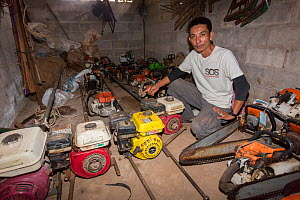 Sayan Raksachart of Freeland Foundation, with confiscated outboard motors and chainsaws used by Siam rosewood tree poachers, Thap Lan National Park, Dong Phayayen-Khao Yai Forest Complex, eastern Thai... - Ann  & Steve Toon