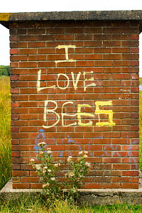 Graffiti on old bus stop saying 'I love bees', Gower, West Wales, UK. August 2014.  -  David  Woodfall
