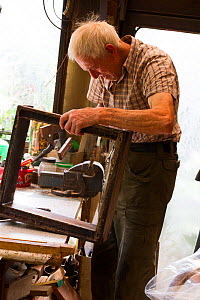 Beekeeper making frames for honey bees, Usk, Gwent, Wales, UK. August 2014.  -  David  Woodfall