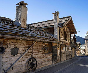 Typical wooden building in Queyras with slate roof, Hautes-Alpes, France, October 2014.  -  Pascal  Tordeux