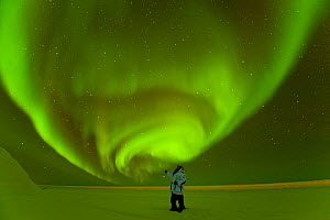 Photographer in front of Northern lights / Aurora borealis glowing brightly over the frozen eastern Beaufort Sea, Arctic National Wildlife Refuge, Alaska Model released. - Steven Kazlowski