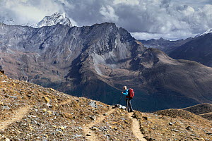 Hiker on the Jhomolhari Trek, getting ready to descend to the Soi Yaksa valley, Bhutan, October 2014.  -  Kirkendall-Spring