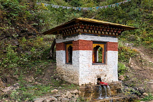 Phallic water spout on a stupa (chorten) inspired by the 'Divine Mad Man' Drukpa Kunley who is said to have given blessings to women via intercourse, Paro River Valley. Bhutan, October 2014.  -  Kirkendall-Spring