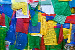 Prayer flags covering the side of Kuendeying Bazzam Bridge over the Wang Chhu in Thimphu. Bhutan, October 2014.  -  Kirkendall-Spring