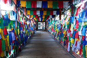 Prayer flags covering the side of Kuendeying Bazzam Bridge over the Wang Chhu, Thimphu. Bhutan, October 2014. - Kirkendall-Spring
