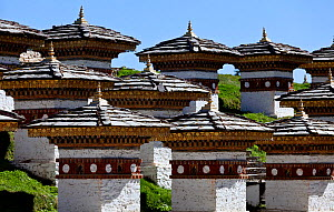 Some of the 108 stupas built at Dochula Pass, on the road between Paro and Thimphu, Bhutan, October 2014. - Kirkendall-Spring