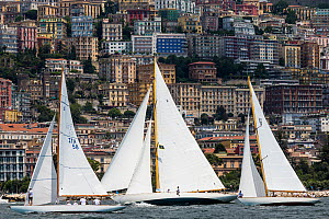 'Halloween' and 'Sirius' racing with Naples in the background, Le Vele D'Epoca Napoli, Panerai Classic Yacht Challenge 2013. Naples, Italy, 27th June 2013. All non-editorial uses must be cleared indiv... - Sea  & See
