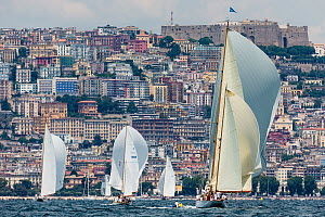 'Eilean' and the rest of the fleet with Naples in the background during Le Vele D'Epoca Napoli, Panerai Classic Yacht Challenge 2013. Naples, Italy, 27th June 2013. All non-editorial uses must be clea... - Sea  & See