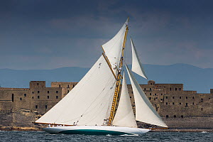 Classic yacht racing in Le Vele D'Epoca Napoli, Panerai Classic Yacht Challenge 2013. Naples, Italy, 27th June 2013. All non-editorial uses must be cleared individually. - Sea  & See