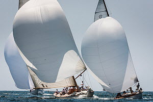 'Emilia' and 'Cholita' racing during the Panerai Classic Yacht Challenge, Le Vele D'Epoca Napoli 2013. Naples, Italy, 30th June 2013. All non-editorial uses must be cleared individually. - Sea  & See