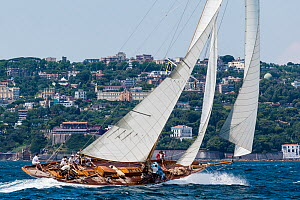 Classic Yacht 'Halloween' during the Panerai Classic Yacht Challenge, Le Vele D'Epoca Napoli 2013. Naples, Italy, 29th June 2013. All non-editorial uses must be cleared individually. - Sea  & See
