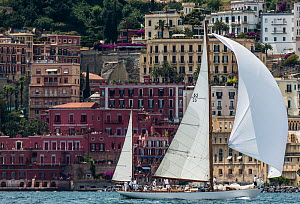 Classic Yacht 'Manitou' with Naples in the background, Panerai Classic Yacht Challenge, Le Vele D'Epoca Napoli 2013. Naples, Italy, 27th June 2013. All non-editorial uses must be cleared individually. - Sea  & See