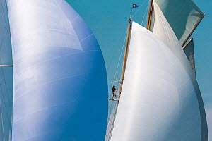 Sails of 'Mariette' and 'Stormy Weather' during the Panerai Classic Yacht Challenge, Argentario Sailing Week 2013. Porto Santo Stefano, Italy, 16th June 2013. All non-editorial uses must be cleared in... - Sea  & See