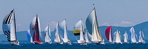 Fleet of Classic Yachts racing in the Panerai Classic Yacht Challenge, Argentario Sailing Week 2013. Porto Santo Stefano, Italy, 16th June 2013. All non-editorial uses must be cleared individually. - Sea  & See