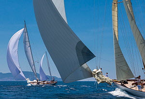 Yachts racing in the Panerai Classic Yacht Challenge, Argentario Sailing Week 2013. Porto Santo Stefano, Italy, 14th June 2013. All non-editorial uses must be cleared individually. - Sea  & See