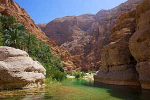 Wadi Shab, or Wadi Al Shab.Al Sharqiyah South Governorate, Sultanate of Oman, February 2015.Photographed for The Freshwater Project. - Michel  Roggo