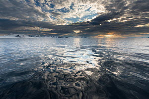 Reflections on the west coast of Spitsbergen, Svalbard, Norway, June.  -  Roy Mangersnes