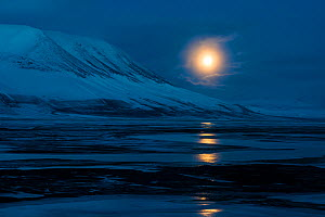 Full moon over Adventsdlen, Longyearbyen, Svalbard, Norway, April. - Roy Mangersnes
