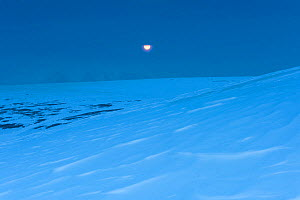 Full moon rising as winter starts on the west coast of Spitsbergen, Svalbard, Norway, August. - Roy Mangersnes