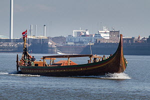 Draken Harald Harfagre (Dragon Harald Fairhair), the largest Viking ship built in modern times, arriving to have her mast repaired. River Mersey, Merseyside, United Kingdom, July 2014. All non-editori... - Graham  Brazendale