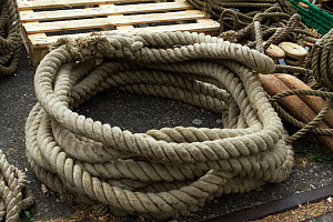 Detail image of blocks and cordage aboard the Draken Harald Harfagre (Dragon Harald Fairhair), West Float Dock, Birkenhead, Wirral, Merseyside, United Kingdom, 31st July 2014. All non-editorial uses m...  -  Graham  Brazendale