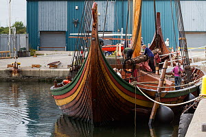 Draken Harald Harfagre (Dragon Harald Fairhair), West Float Dock, Birkenhead, Wirral, Merseyside, United Kingdom, 31st July 2014. All non-editorial uses must be cleared individually.  -  Graham  Brazendale