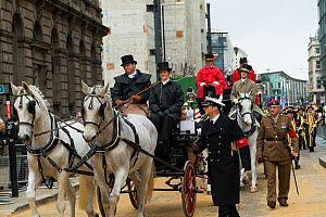 Two Arab horses pull a carriage during the 799th Lord Mayor show, London, United Kingdom. November 2014.  -  Kristel  Richard