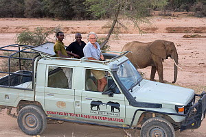 Iain-Douglas-Hamilton and team watching African elephant (Loxodonta africana) whilst out on research in Samburu National Park, Kenya. Model released - Lisa  Hoffner