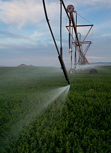 Irrigation system in former arid grassland habitat, allowing Soybean agriculture, Chihuahua, Mexico. May 2008. - Krista Schlyer