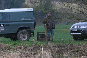 Man with Eurasian beaver (Castor fiber) in cage ready to be released into River Otter. Part of escaped population released back to the wild following veterinary check ups by Royal Zoological Society o...  -  Devon Wildlife Trust