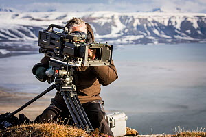 Cameraman filming, Svalbard, Norway, June. Taken on location for BBC 'Life' series.  -  Paul Williams