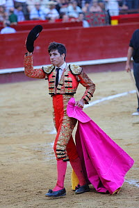 Torero / Bullfighter in traditional costume, holding magneta cape used in the first round (Tercio) of the bullfight, Tercio de Varas. Plaza de Toros, Valencia, Spain. July 2014. - Barry Bland