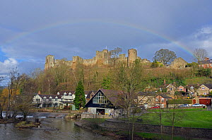Rainbow over Ludlow Castle and Ludlow Mill, Shropshire, England. February 2014.  -  Will Watson