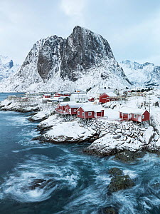 Rorbu houses in front of Festhelltinden mountain, Hamnoy, Moskenes, Lofoten, Norway, December.  -  Erlend Haarberg