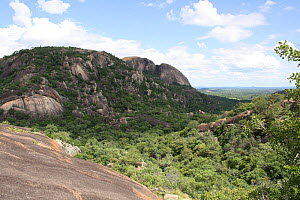 Worlds View, near the graves of Cecil Rhodes, and Leander Starr Jameson, Matobo Hills, Zimbabwe. January 2011.  -  Steve O. Taylor (GHF)