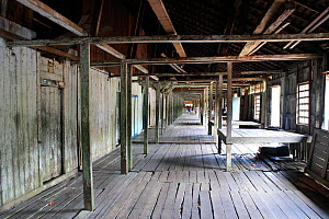 Interior of Dayak longhouse, Pontianka, West Kalimantan, Indonesian Borneo. June 2010. - Steve O. Taylor (GHF)
