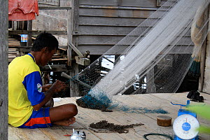 Man repairing nets, Gunung Palung National Park, West Kalimantan, Indonesian Borneo. July 2010.  -  Steve O. Taylor (GHF)