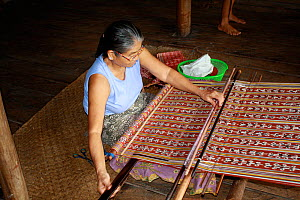 Weaving traditional Iban pua kumbu fabric, in Dayak longhouse, Pontianak, West Kalimantan, Indonesian Borneo. August 2010.  -  Steve O. Taylor (GHF)