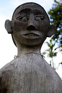 Ancestral figure carving in village, Southern Kalimantan, Indonesian Borneo. August 2010. - Steve O. Taylor (GHF)