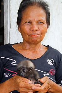 Woman holding orphan baby gibbon (Hylobates) whose mother has been killed in palm oil plantation, Southern Kalimantan, Indonesian Borneo. August 2010.  -  Steve O. Taylor (GHF)