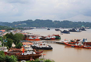 Port of Balipapan with barges full of coal from the open cast mines, East Kalimantan.  June 2010. - Steve O. Taylor (GHF)