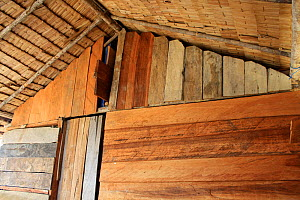 Apex of traditional Dayak  longhouse, East Kalimantan, Borneo. June 2010. - Steve O. Taylor (GHF)
